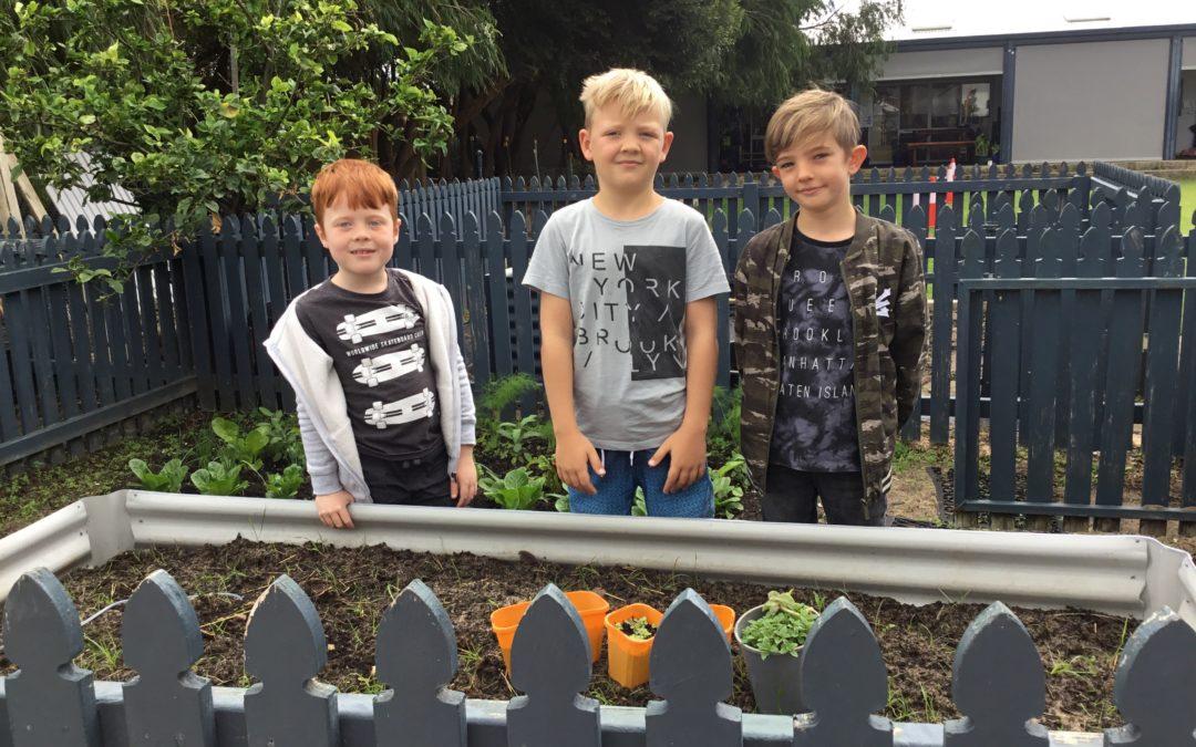 Rockingham Montessori School boys striking a photo in front of the vegetable garden