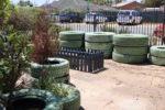 Snapshot of the garden at the Rockingham Montessori School