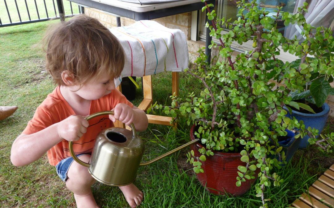 Rockingham Montessori School male student crouching down to water plants