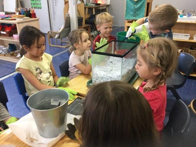 Rockingham Montessori School male and female children filling a fish tank